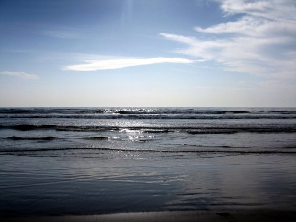 Torrey Pines Beach San Diego