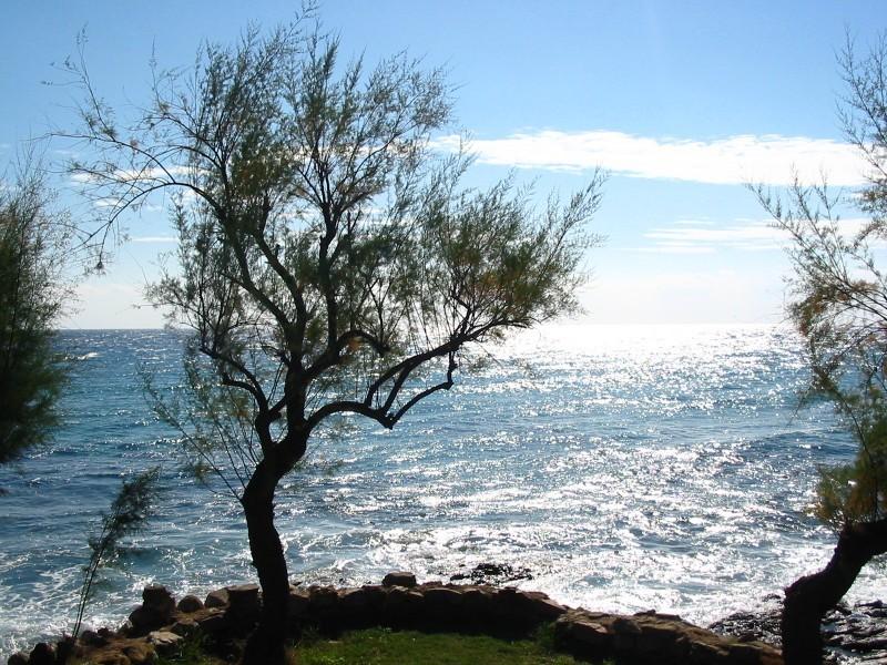 Sea, Corsica