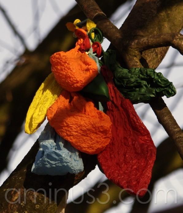 ballons, deflated, tree