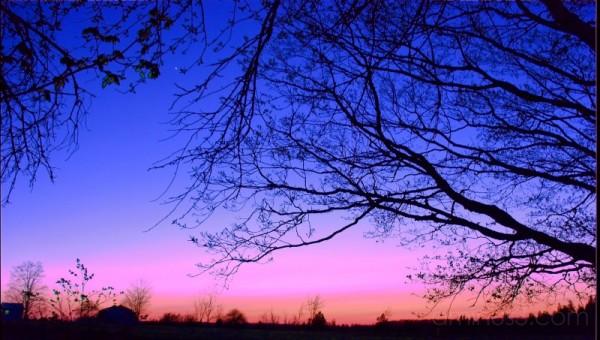 Dundalk Sunset