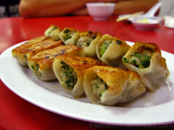 Pan-Fried Chinese Dumplings : The Other Side