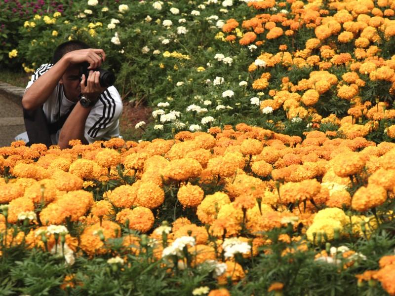 A photographer at the Sentosa Flowers