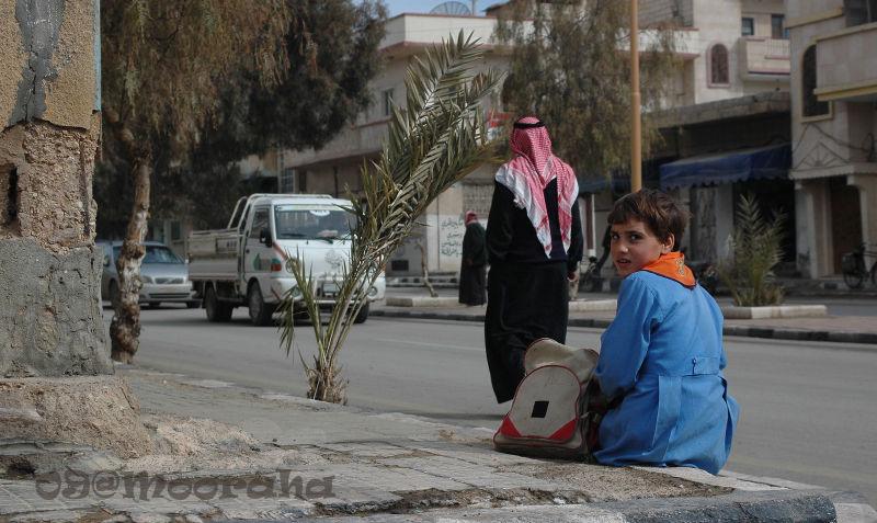 mooraha syria palmyra