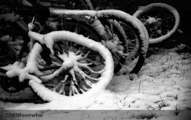 bike snow metu