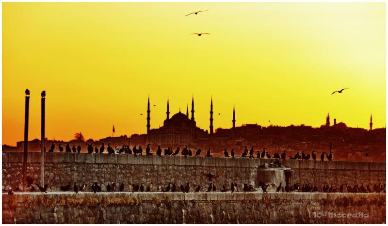 istanbul mooraha