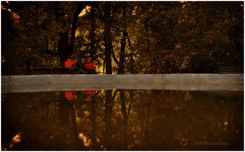 mooraha ukraine kyiv kiev botanic garden