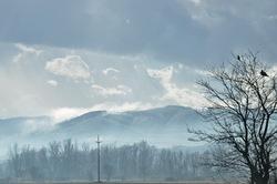 bulgaria winter white morning