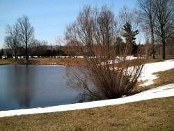 Park Cemetery Pond
