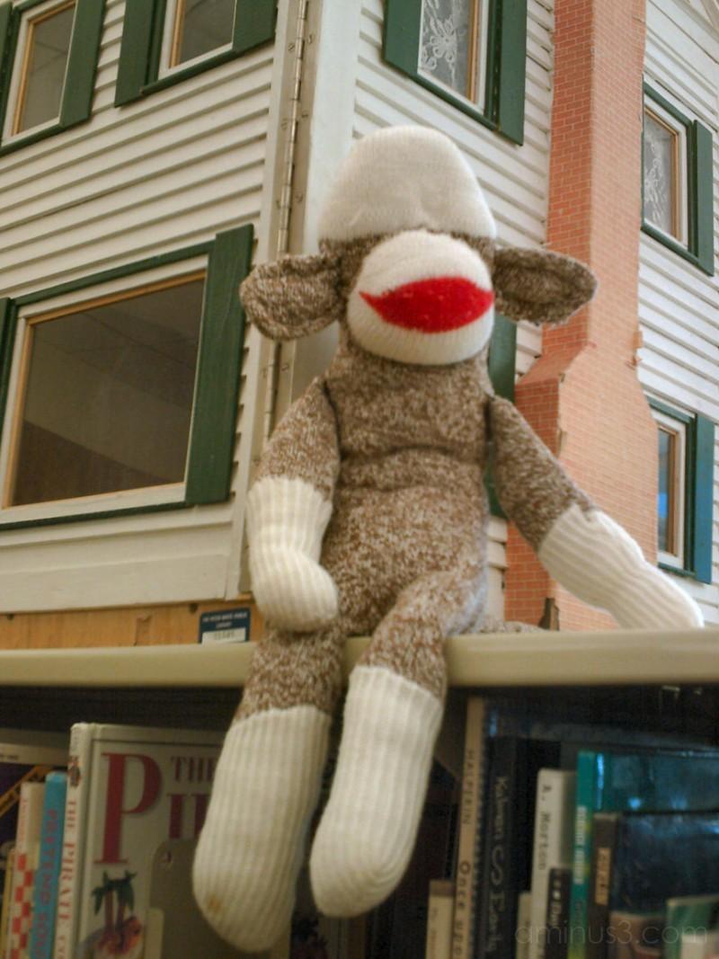 Sock Lamb, Dollhouse and Books