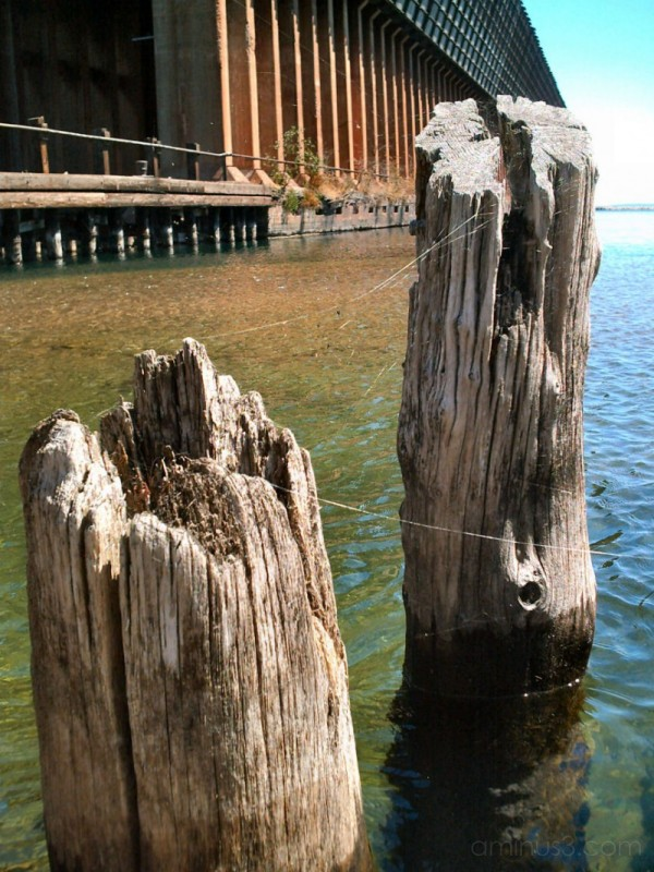 Remains of an old shipping dock and iron ore dock.