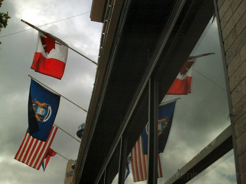 Flags Reflection