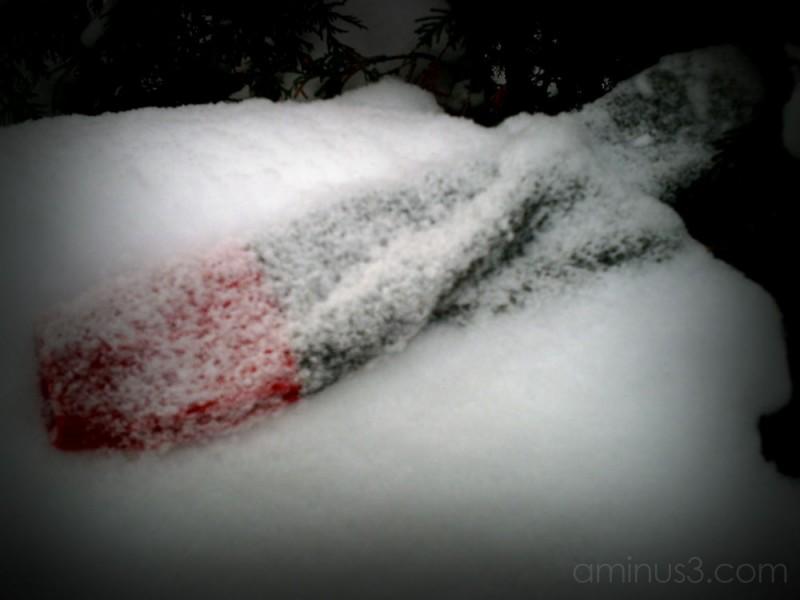 sock in snow