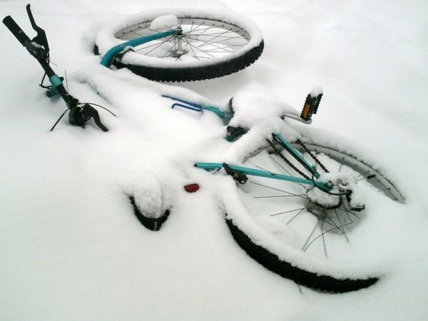 Buried Bike