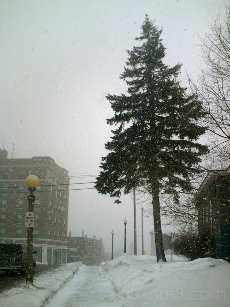 Light Snow?