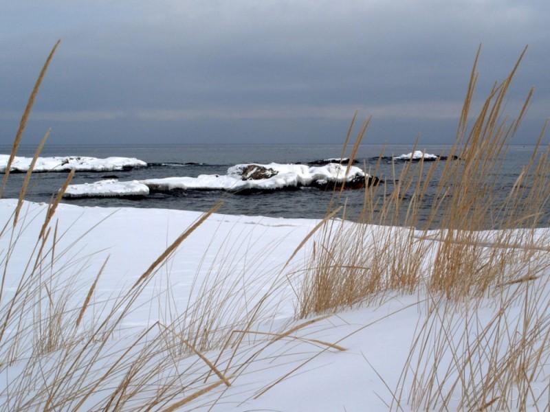 Wintery McCartys Cove