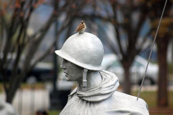 Historic Bird