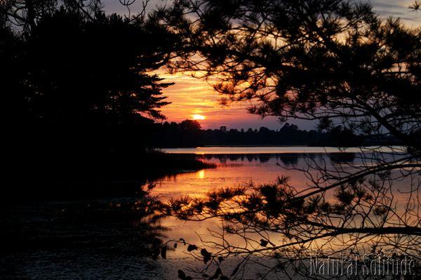 Sunset at Seney National Wildlife Refuge