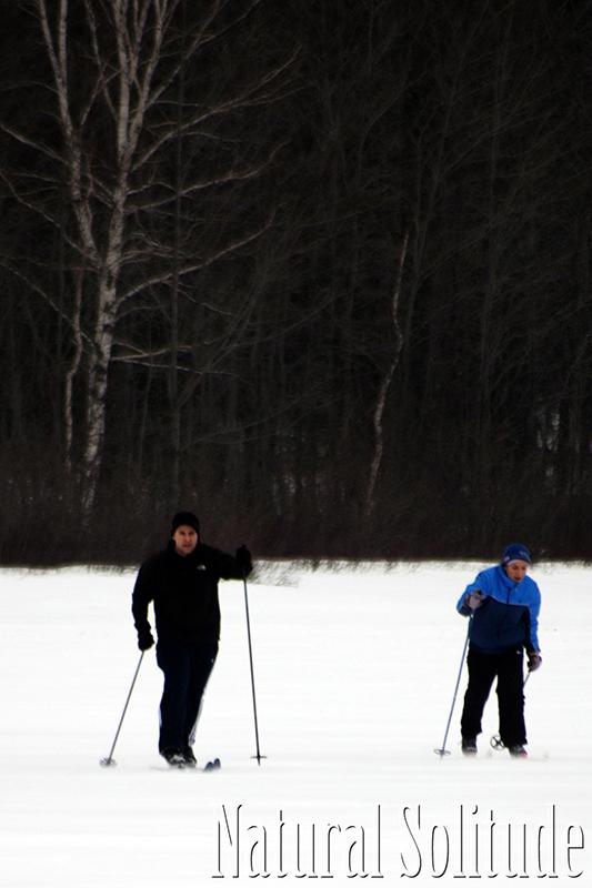 Skiing Across Harlow Lake