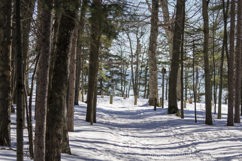 winter hiking presque isle