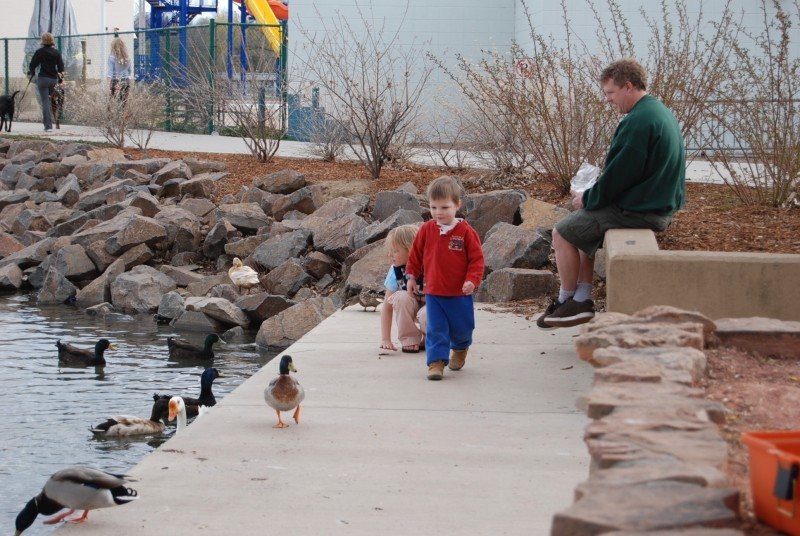 A walk with A duck