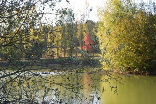 Lac de Bouville