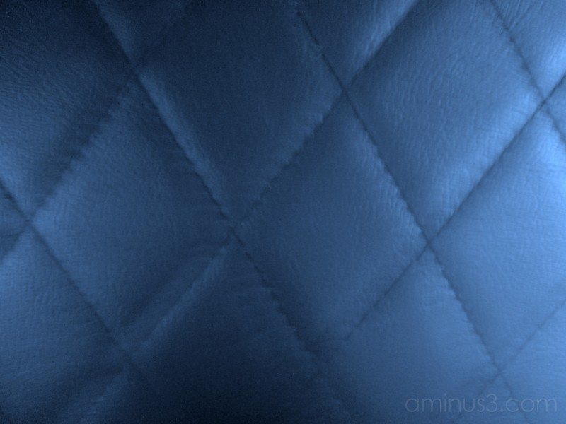 Leather III