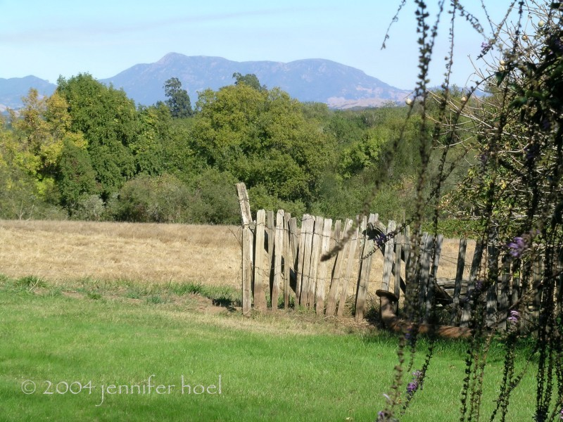 landscape at the hop kiln winery in california