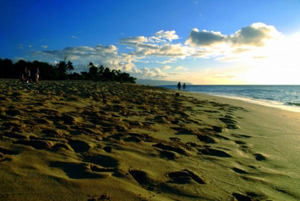 A walk in the beach...
