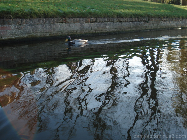A cold Punting day