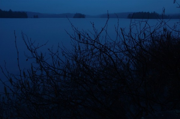 Lake Louisa After Rain II