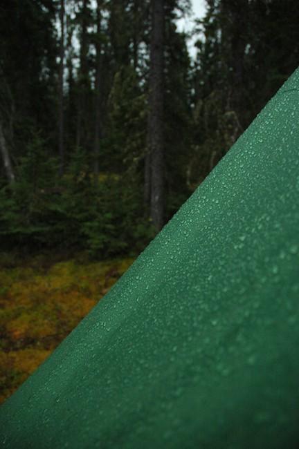 Raining Campsite