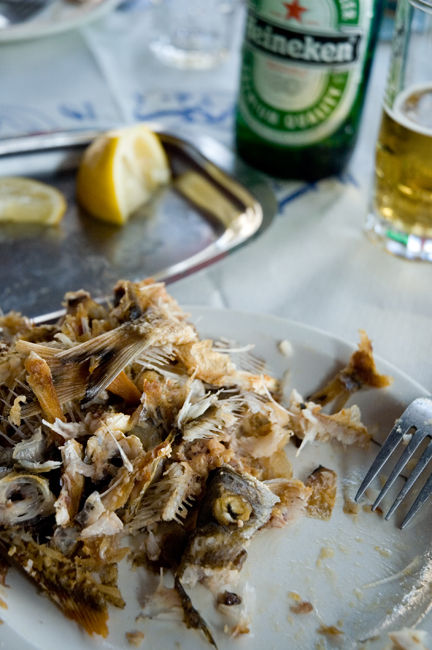 Fresh Fish Lunch