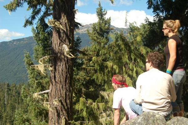 Cougar Mountain, BC