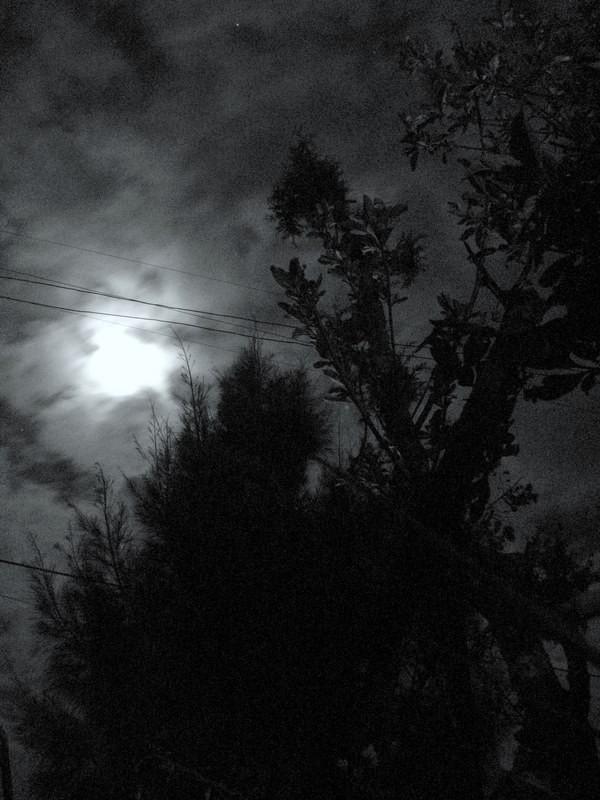 Night in Gojjam