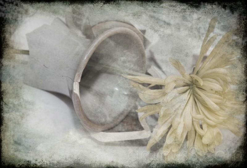 My broken vase