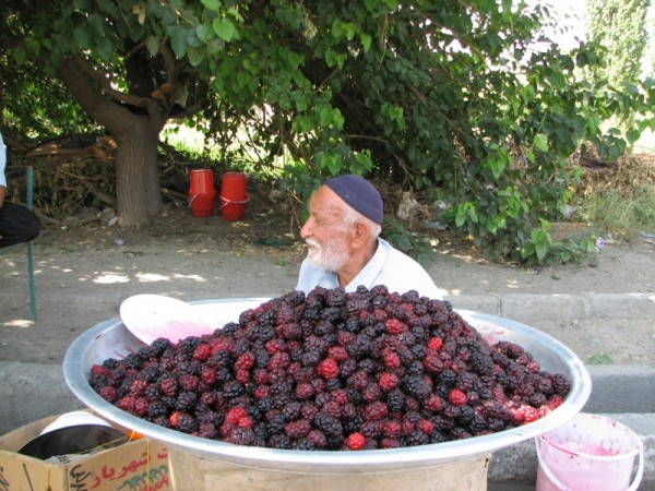 Old man selling blackberries