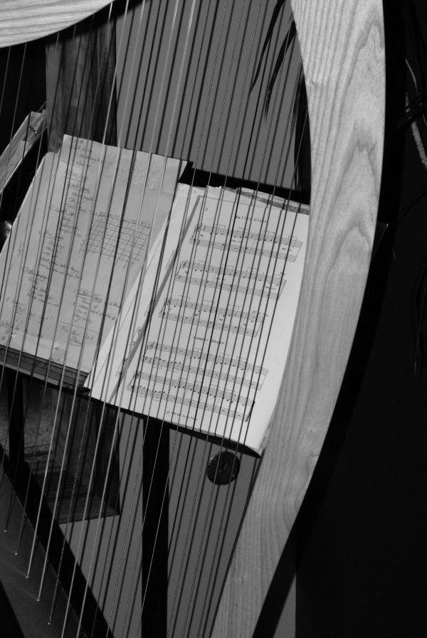 harp & music