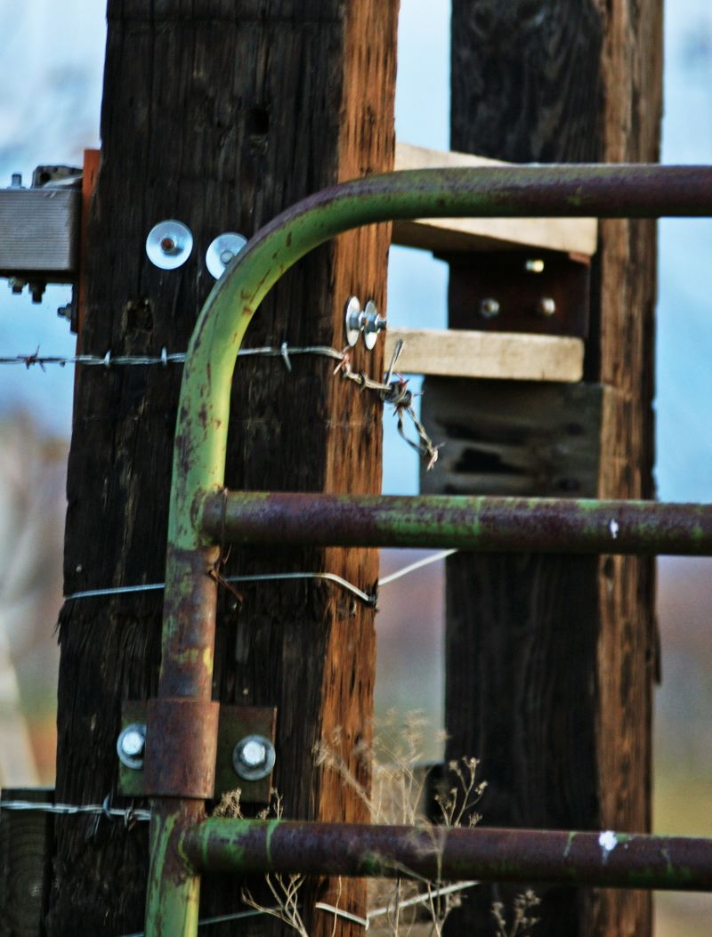 fence and post