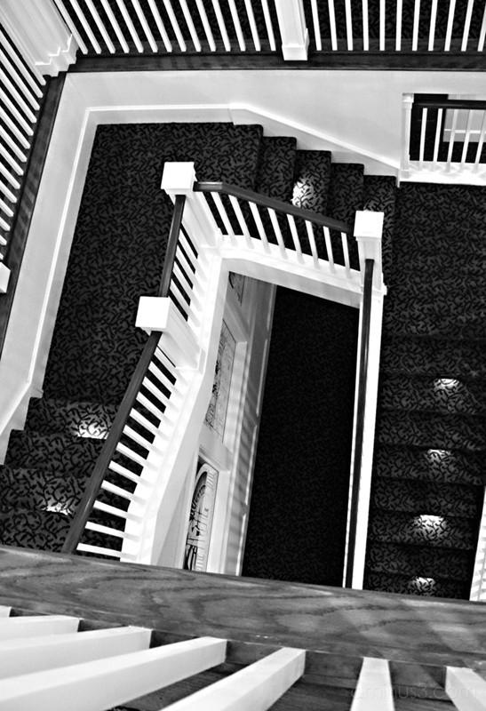 Escher Redux