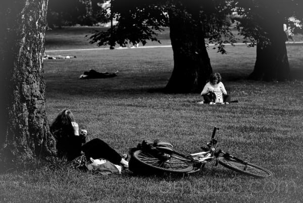 La hierba os sienta tan bien (II)