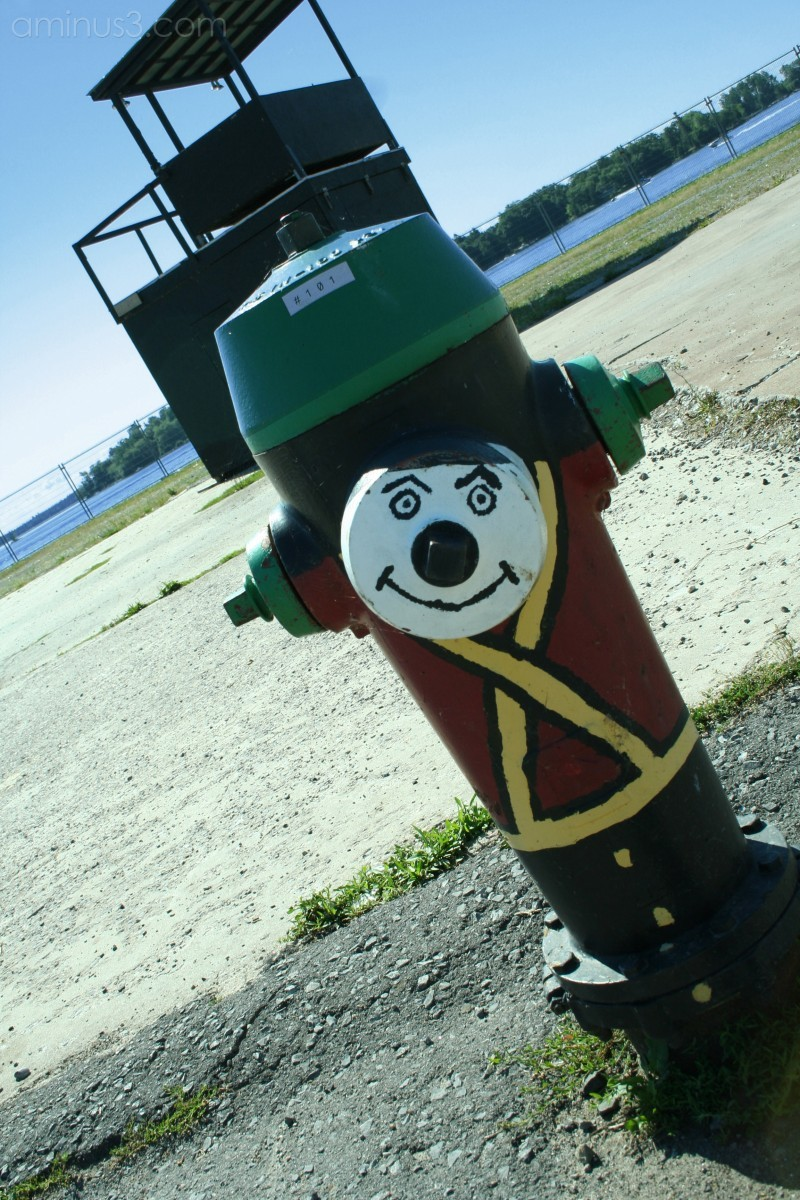 The Little Fire Hydrant that Could