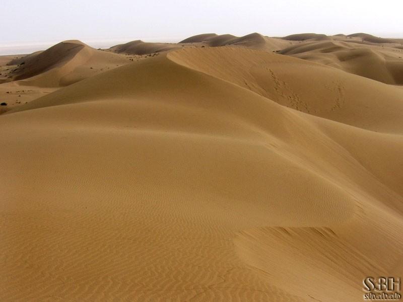 Hills of Desert