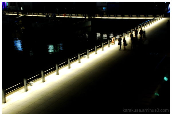 path of the light #3