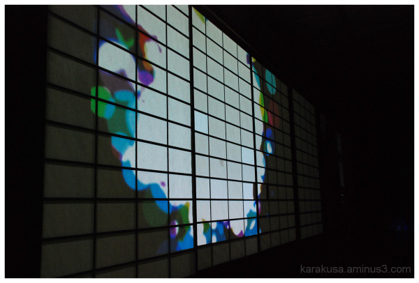colourful dots are floating on the wall. #2