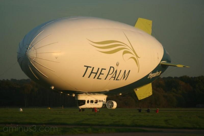 Palm Airship 07