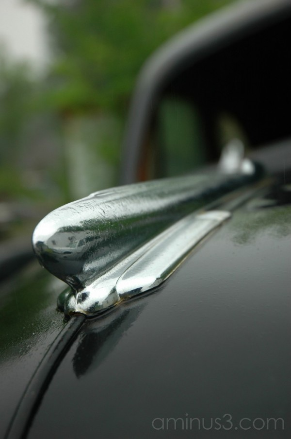 1952 Chevrolet hood ornament