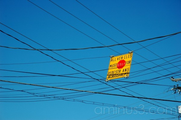 Pedestrian crossing sign caught in the wires