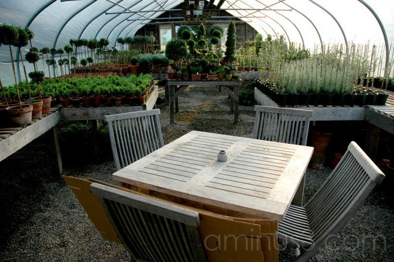 Snug Harbor Farm greenhouse