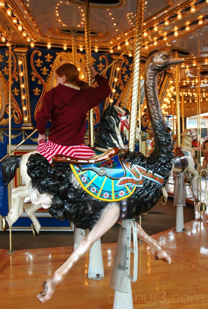 Carousel emu