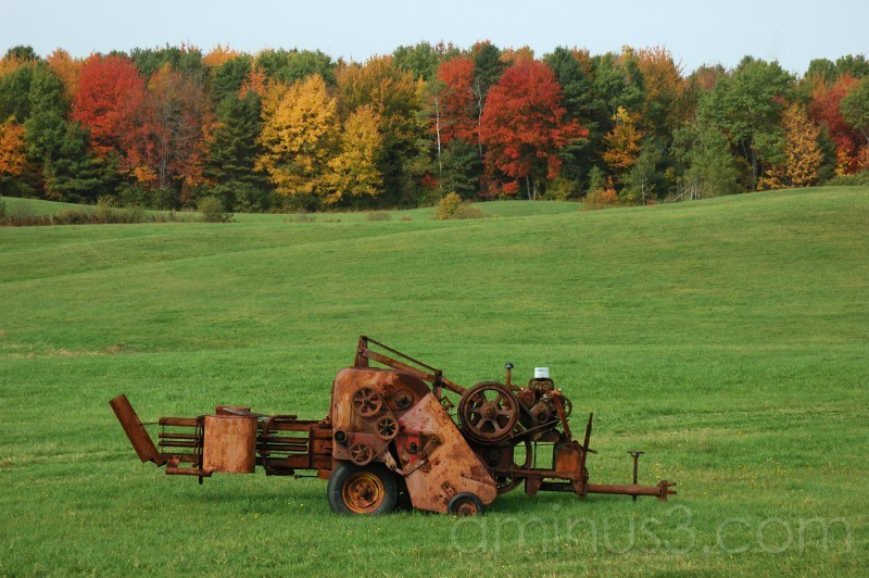 New England field